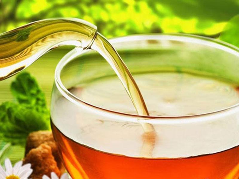 """Bí mật về """"thần dược"""" trà lá ổi bạn nên biết."""