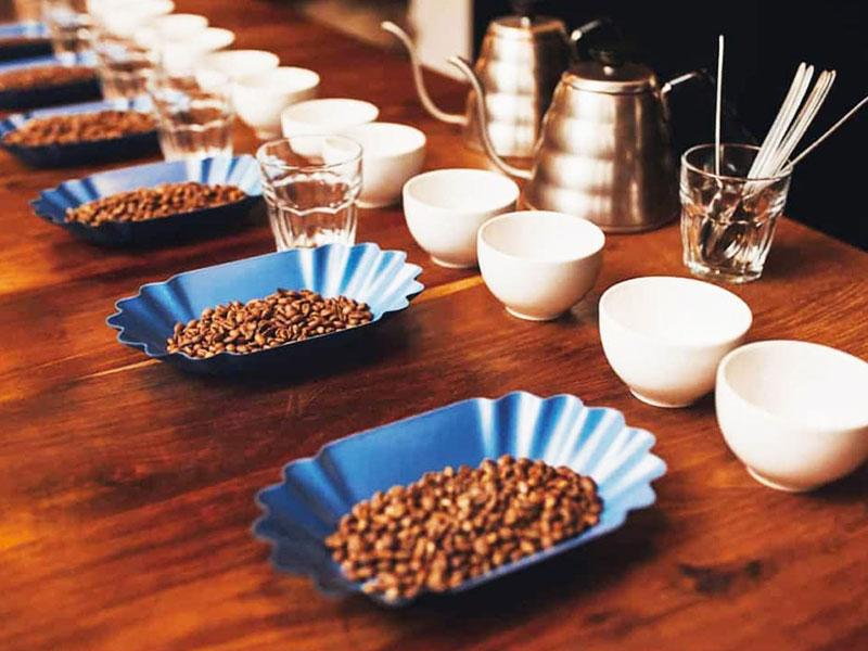 Những điều cần biết về Cupping cà phê