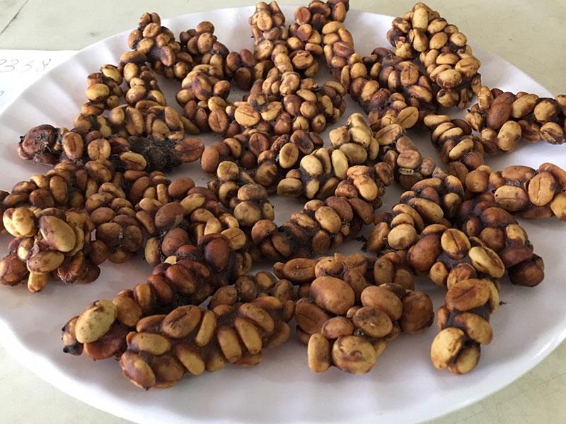 Sự lôi cuốn trong phong cách pha cà phê  Chồn