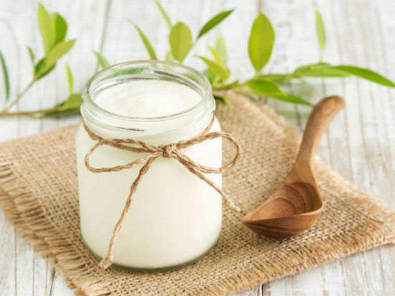 Sữa chua - Một nguồn dinh dưỡng dành cho mọi thành viên trong gia đình