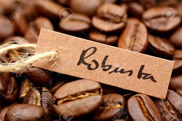 Cà phê nguyên chất Robusta là gì? | Cà phê nguyên chất Gia Lai