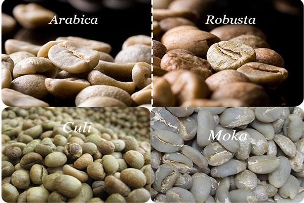 Kinh nghiệm phân biệt các loại cà phê hạt phổ biến của Classic Coffee