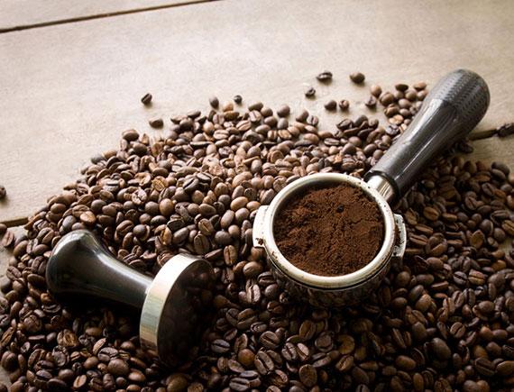 Robusta Espresso (500g)